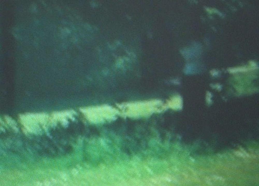 Solari Nadja G 2003 1
