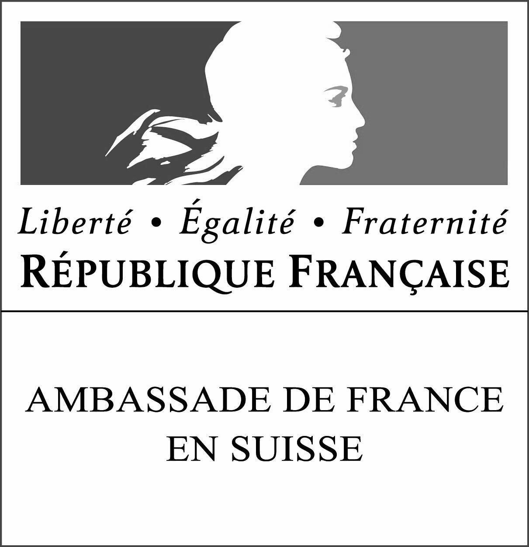 Logo Amb Suisse Rvb Sw